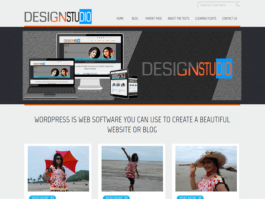 Free D5 Design WordPress theme