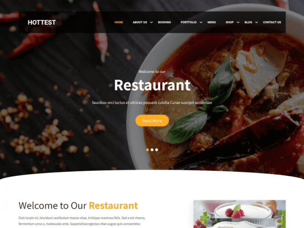 Free Hottest WordPress theme