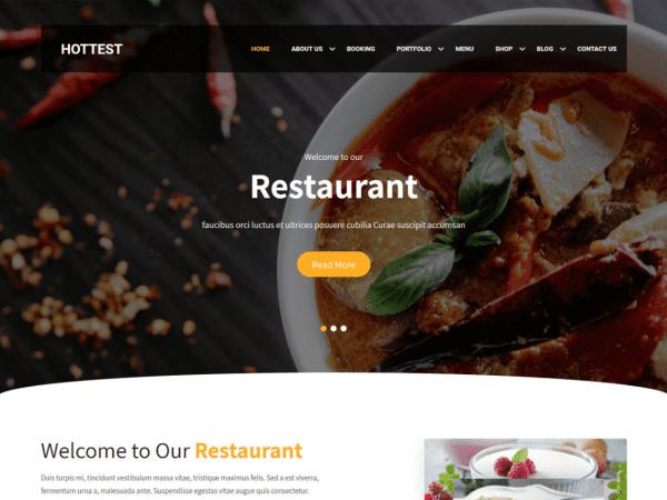 Free Hottest WordPress theme
