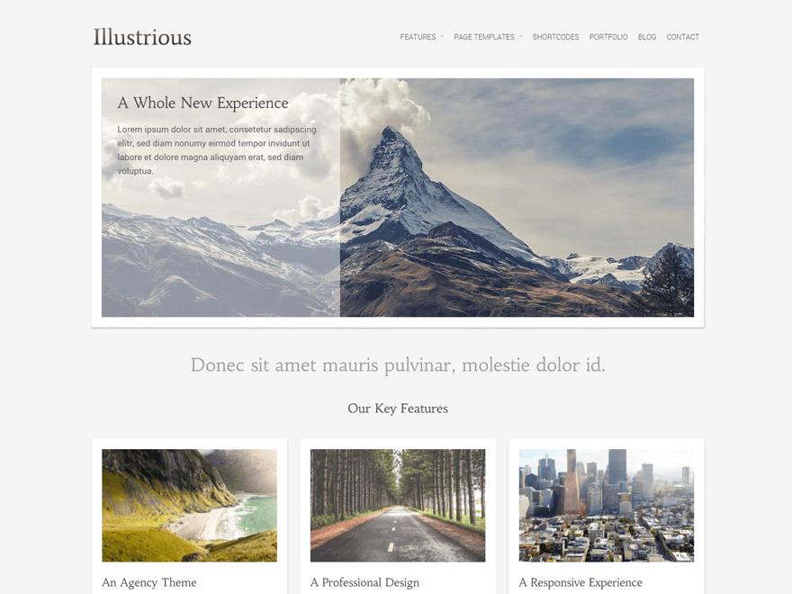 Free Illustrious WordPress theme