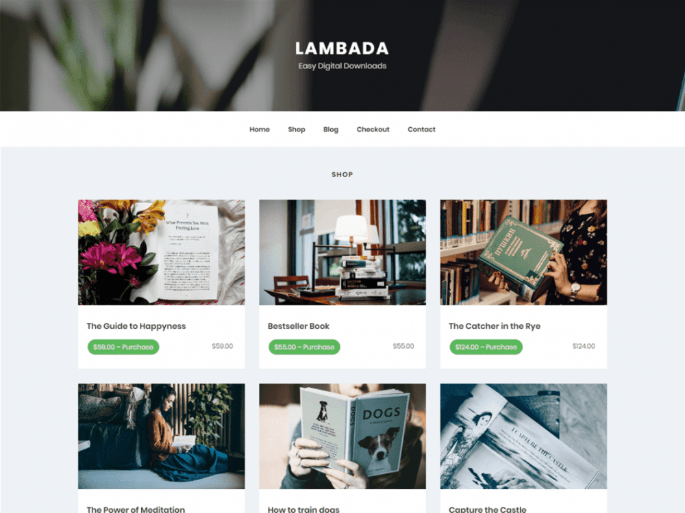 Free LambadaLite WordPress theme