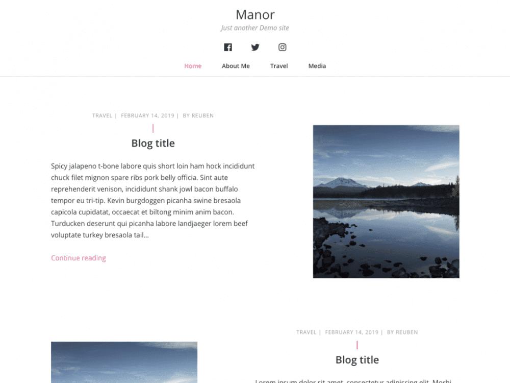 Free Manor WordPress theme