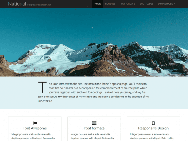 Free National Basic WordPress theme