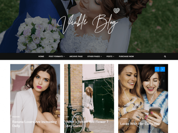 Free Viable Blog WordPress theme