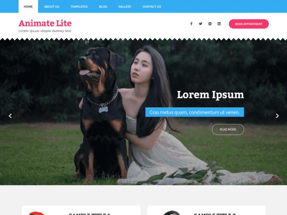 Free Animate Lite WordPress theme