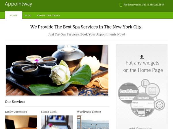 Free Appointway WordPress theme
