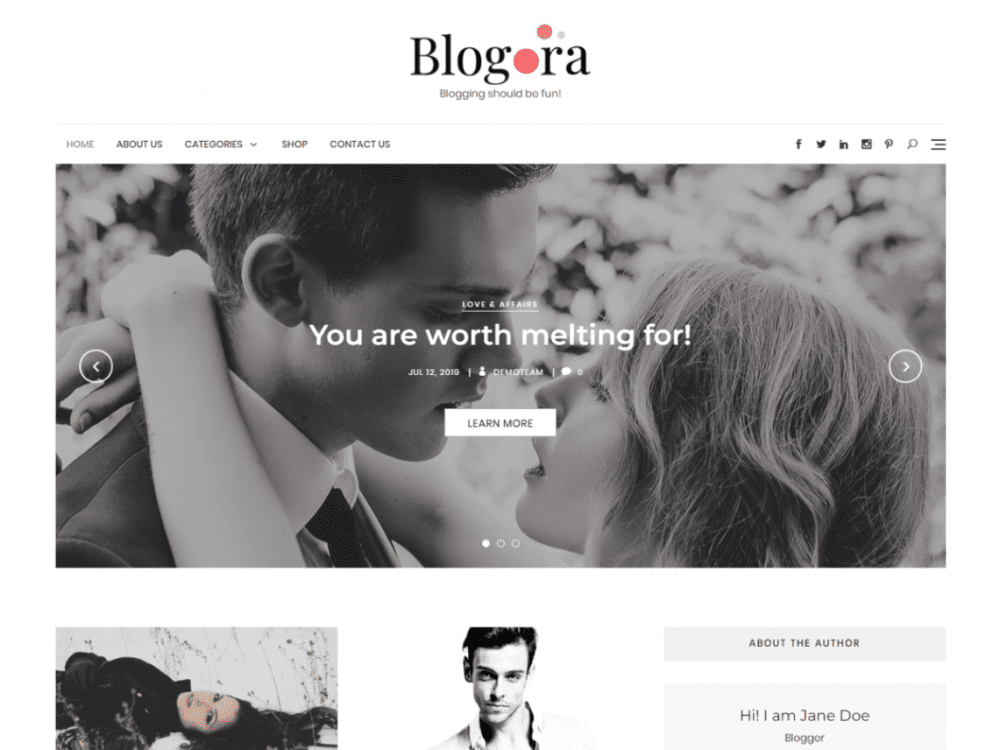 Free Blogora WordPress theme