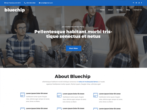 Free Bluechip WordPress theme