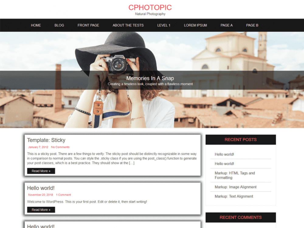 Free CPhotoPic Lite WordPress theme