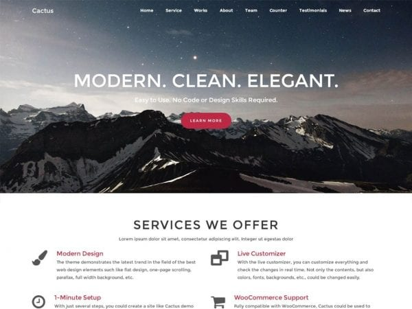 Free Cactus WordPress theme