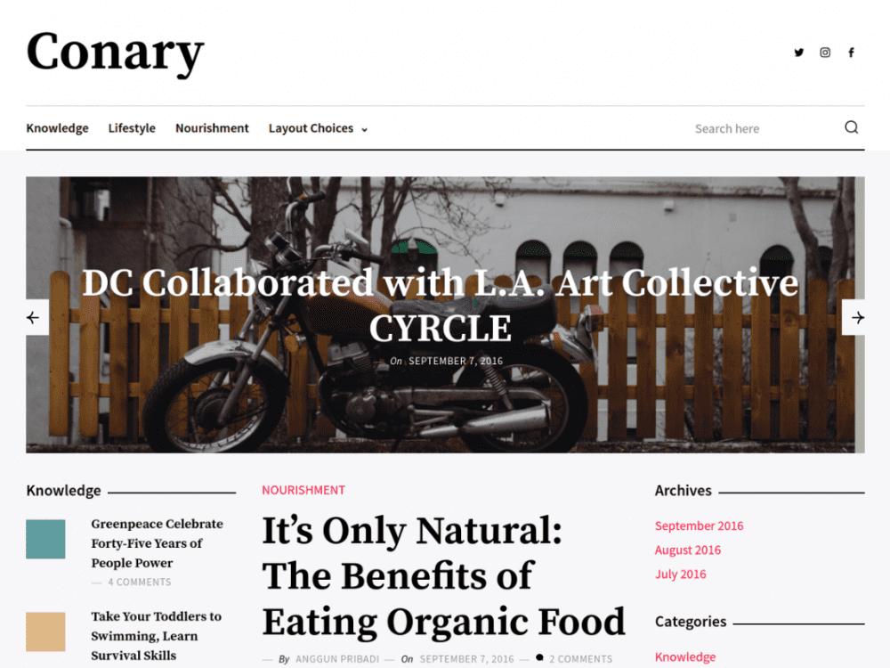 Free Conary WordPress theme
