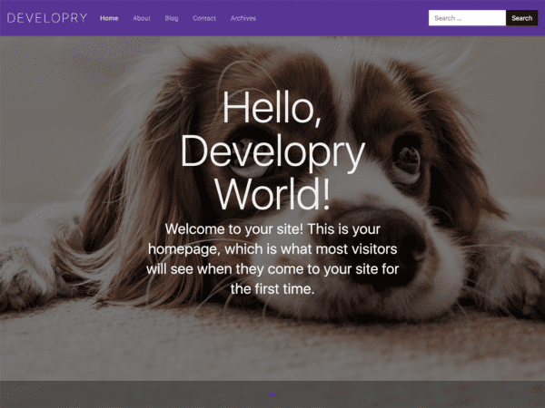 Free Develop(ry) Lite WordPress theme