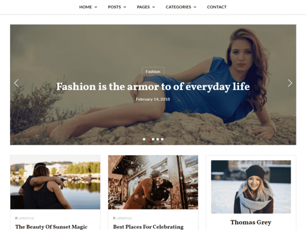 Free Key Blog WordPress theme