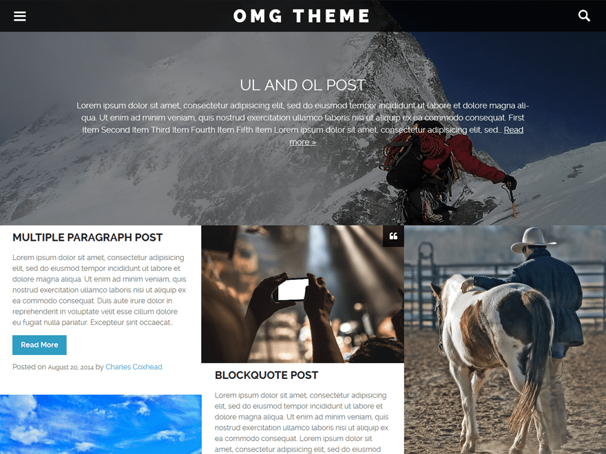 Free OMG WordPress theme