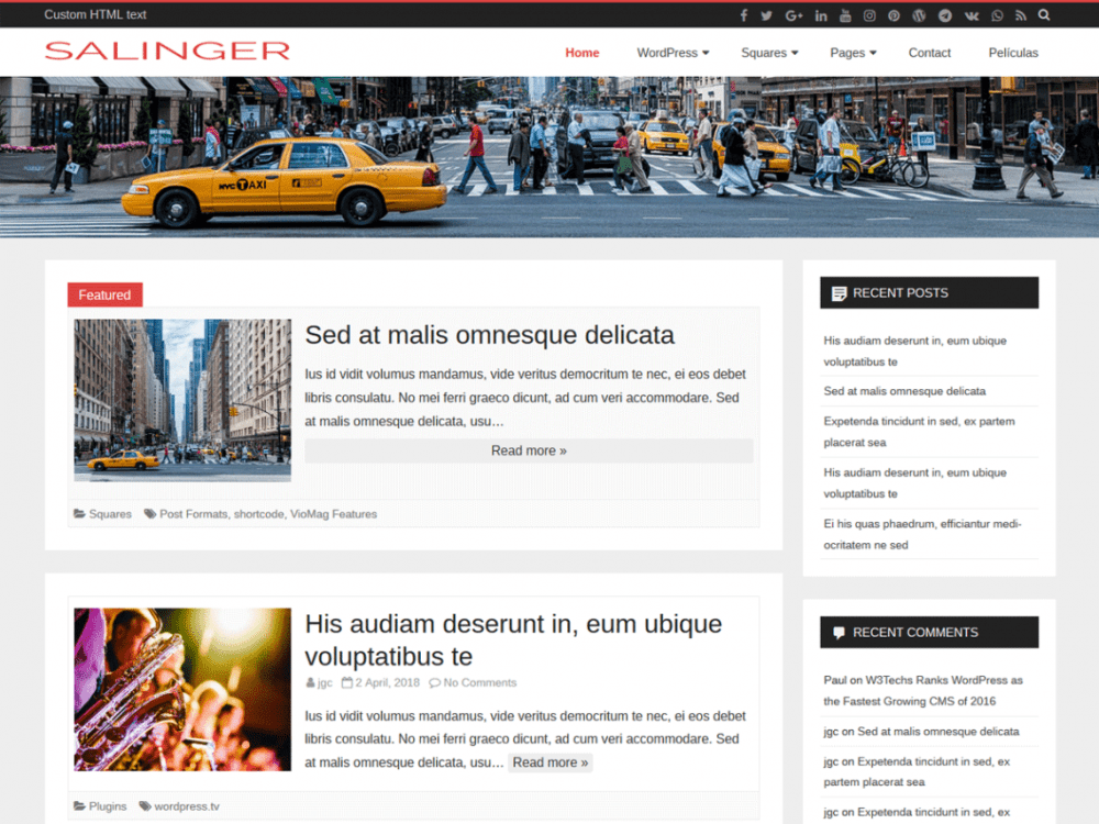 Free Salinger WordPress theme
