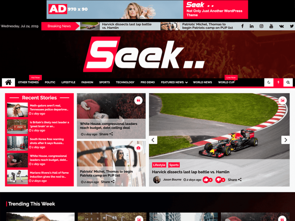 Free Seek WordPress theme
