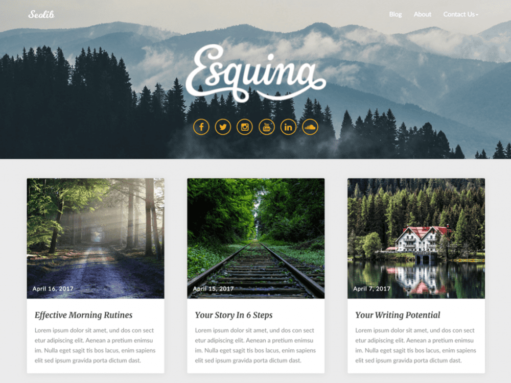 Free Seolib WordPress theme