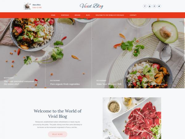 Free Vivid Blog WordPress theme