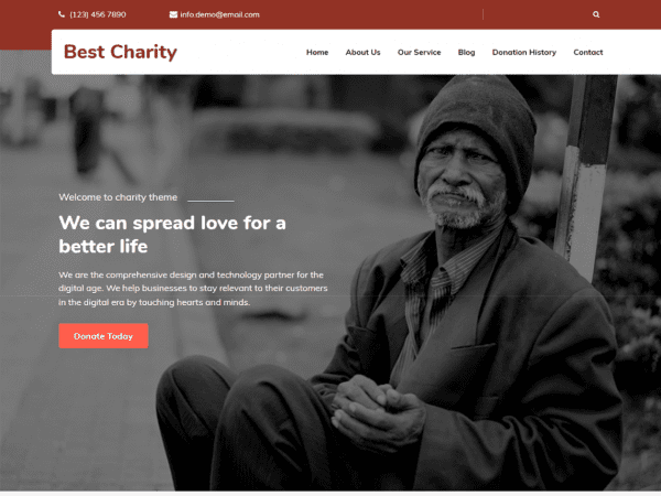 Free Best Charity WordPress theme