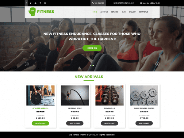 Free Core Fitness WordPress theme