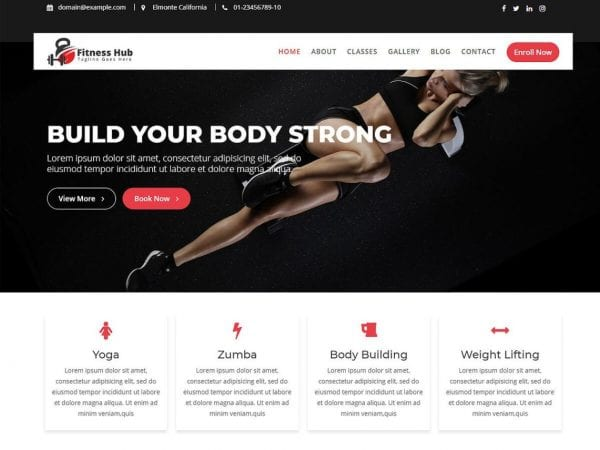 Free Fitness Hub WordPress theme