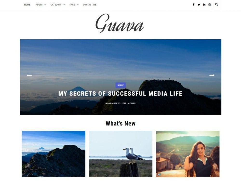 Free Guava WordPress theme