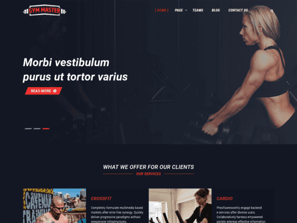 Free Gym Master WordPress theme