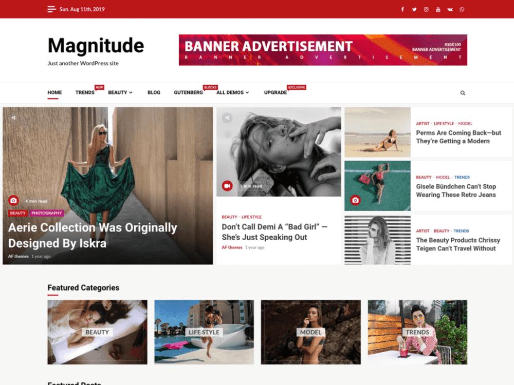 Free Magnitude WordPress theme