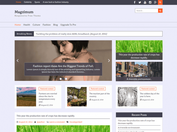 Free Magzimum WordPress theme