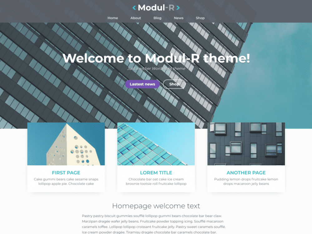 Free Modul R WordPress theme