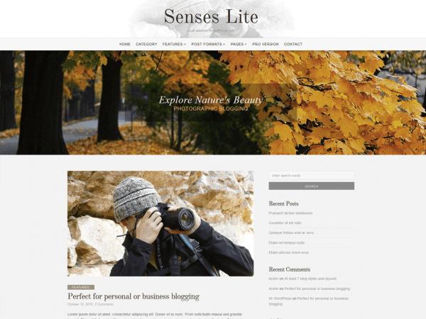 Free Senses Lite WordPress theme