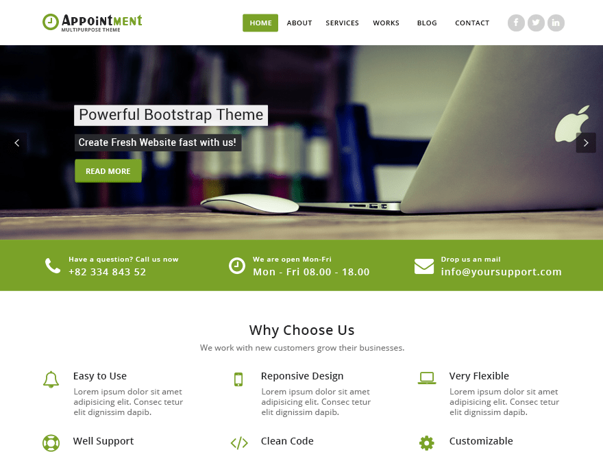 Free Appointment Green WordPress theme