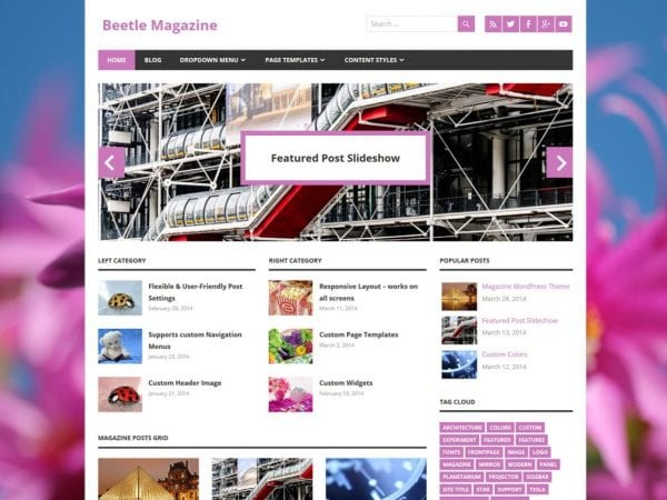 Free Beetle WordPress theme