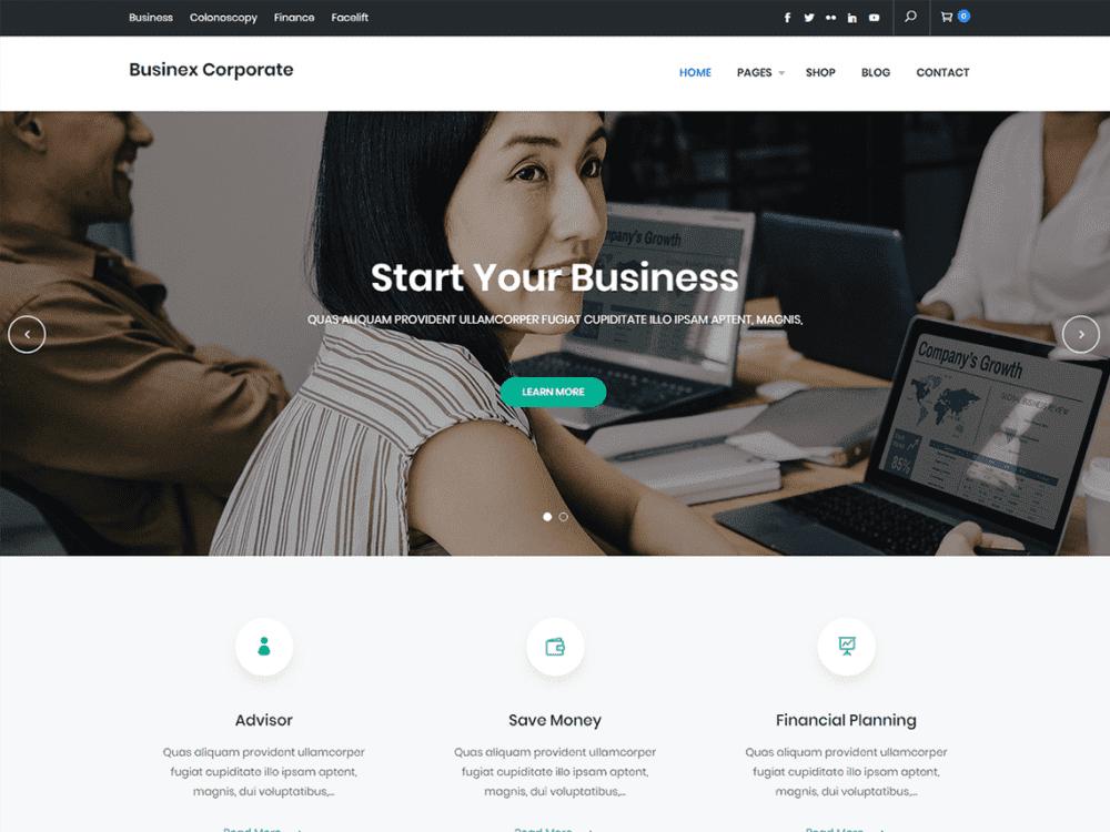 Free Businex Corporate WordPress theme