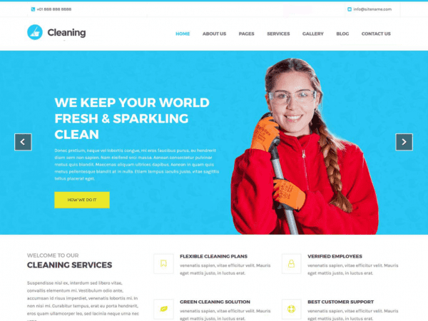 Free Cleaning Lite WordPress theme