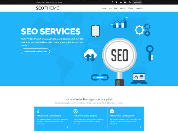 Free Seofication WordPress theme