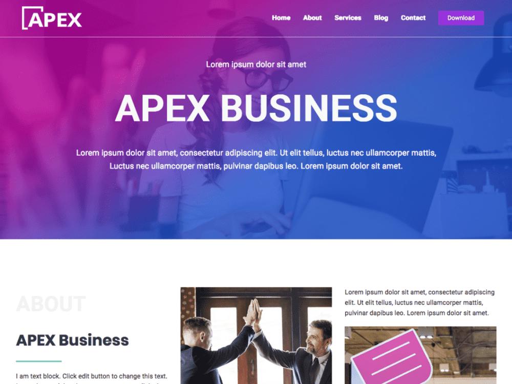 apex business