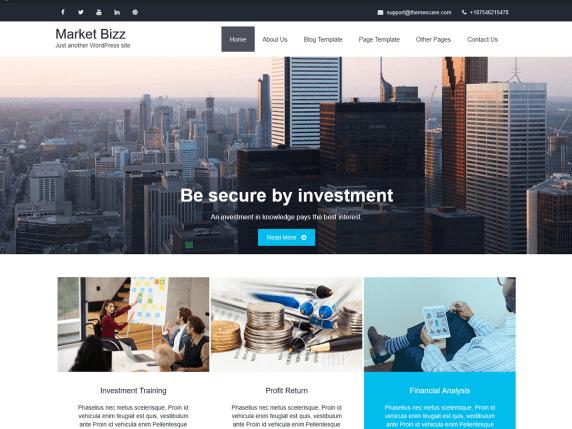 Market Bizz WordPress Theme